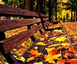 φθινόπωρο